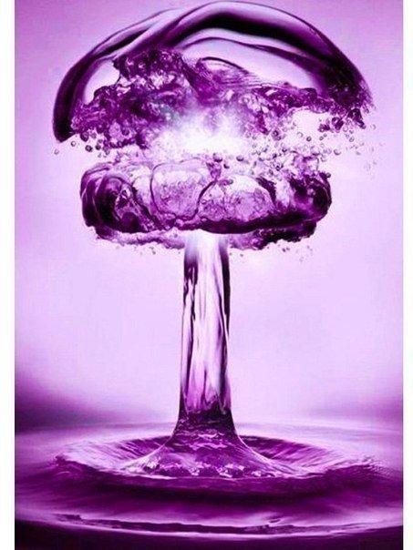 Этот гриб может уничтожить всё человеество